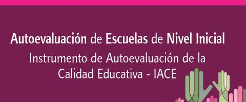 iace inicial