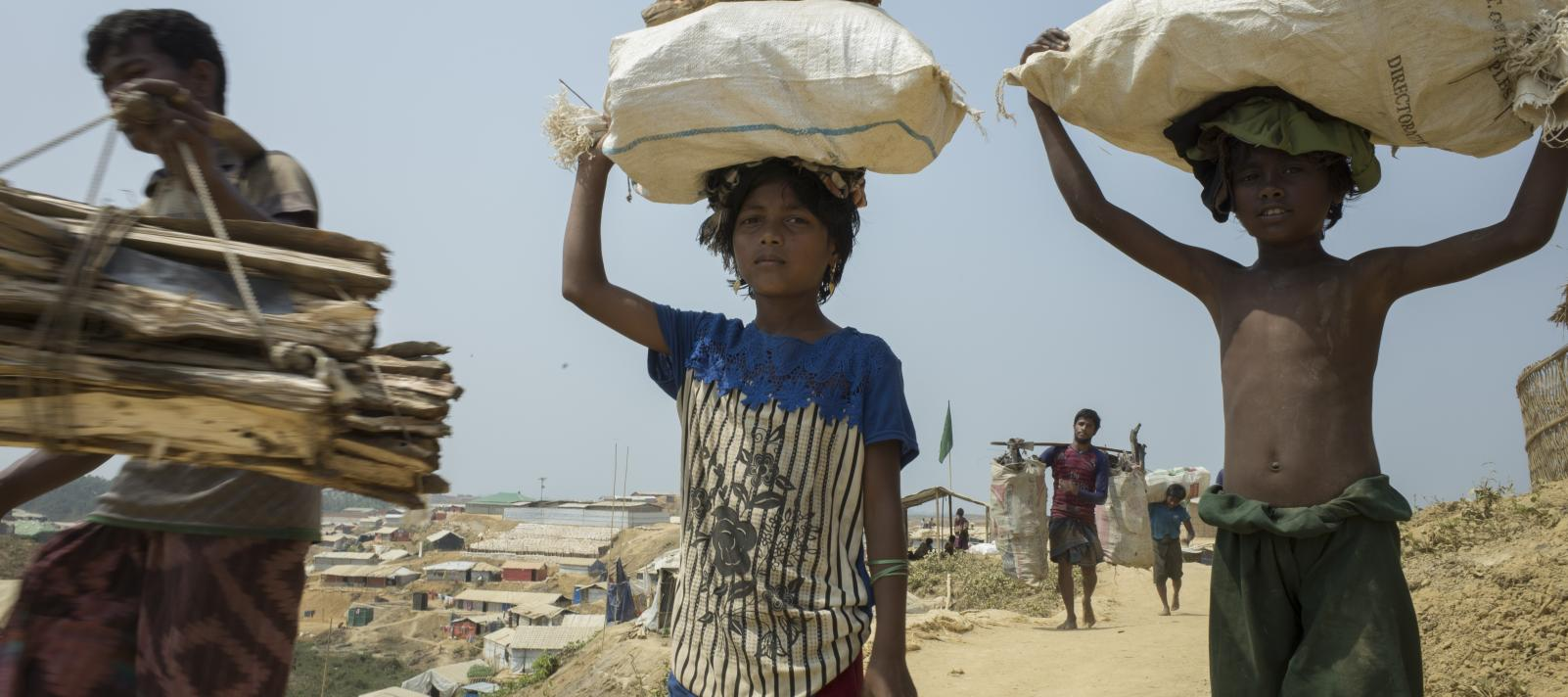 Rohingya children are collecting fire wood for cooking