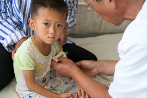 malnutrition in DPR Korea
