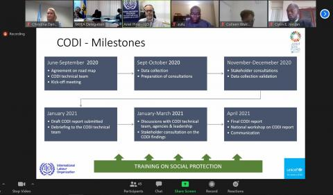 SDG CODI online meeting