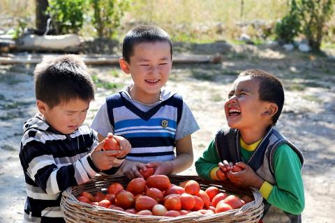 Children sitting around a basket of tomatoes.