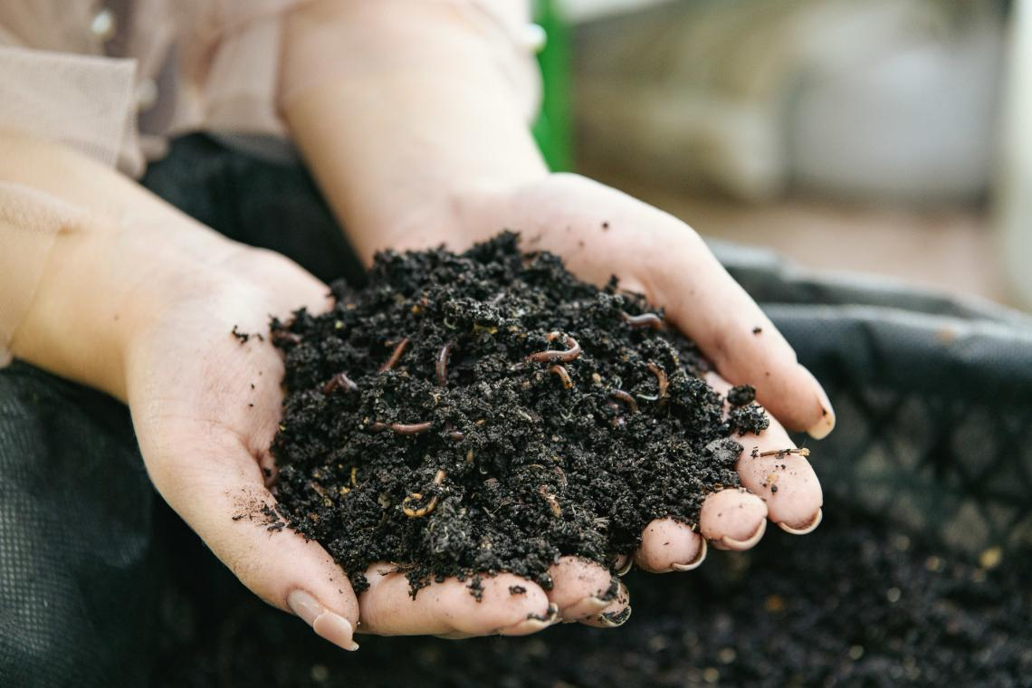 Soil with warms