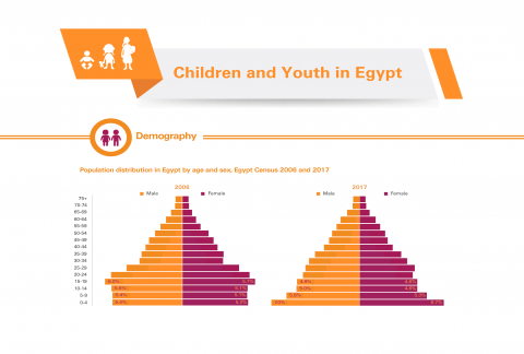 The Children and Youth Census Briefs are produced in cooperation with CAPMAS to provide reanalysis of Census 2017 data. The briefs provide better understanding of issues related to children and youth supported by data on education, marital status, health insurance, and use of IT devices.
