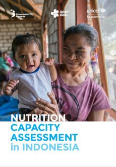 Nutrition capacity assessment report