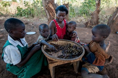 A family eats a daily meal of dried peas at home in Balaka district in Malawi.