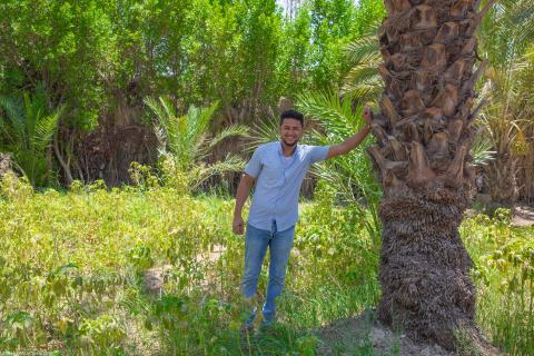 A guy is standing in front of a date tree