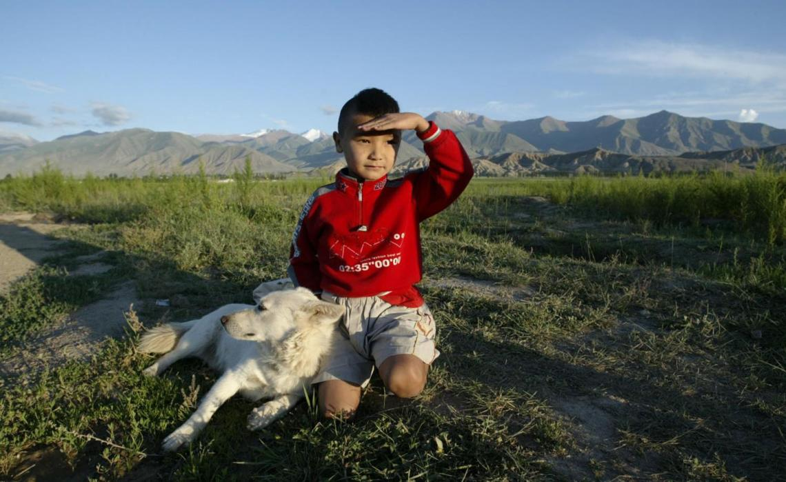 Boy with dog on the background of mountains
