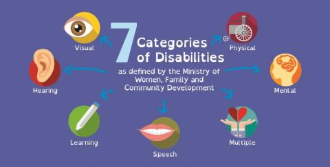 7 categories of disabilities