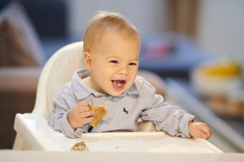A baby eating bread