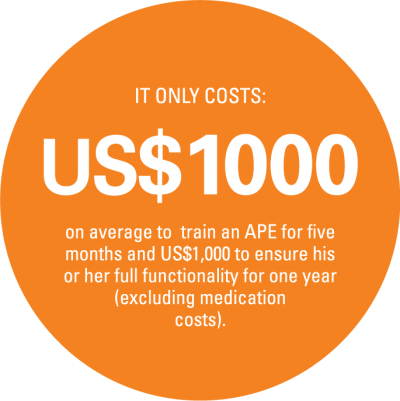 Cost to train an APE for five months in Mozambique