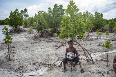 Teniou, 9, sits on a mangrove in an area which usually floods at high tide in Tebunginako village, Abaiang Atoll, South Tarawa, Kiribati, Saturday 30 January 2016.