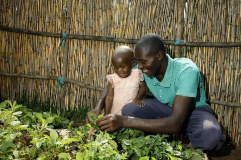 A father in Gicumbi District, Rwanda surveys his kitchen garden vegetables with his young daughter.