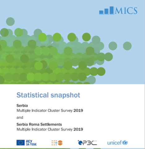 Statistical snapshot - Multiple Indicator Cluster Survey 2019