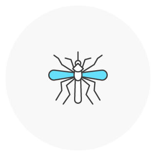 Icon of a mosquito
