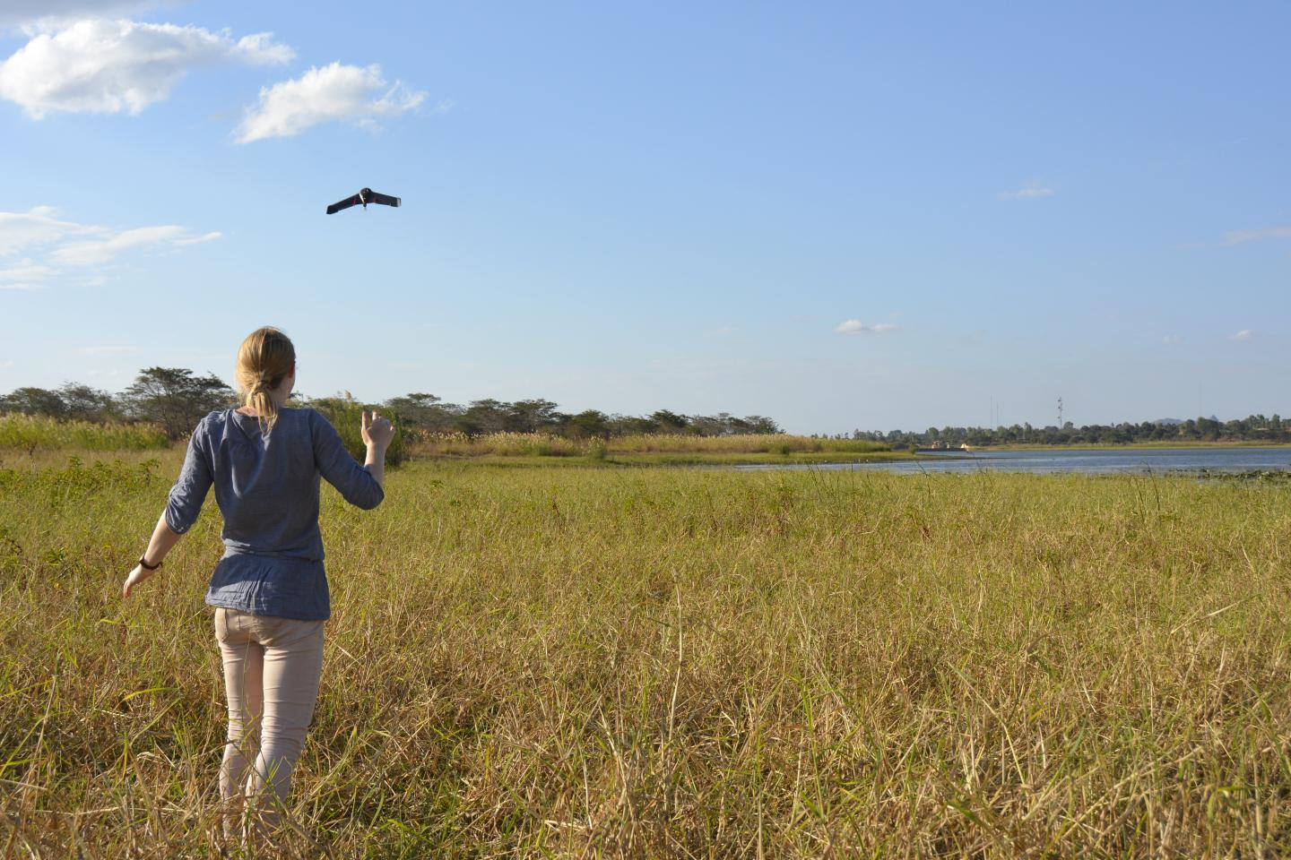 A woman looks up at a drone in a field, Malawi