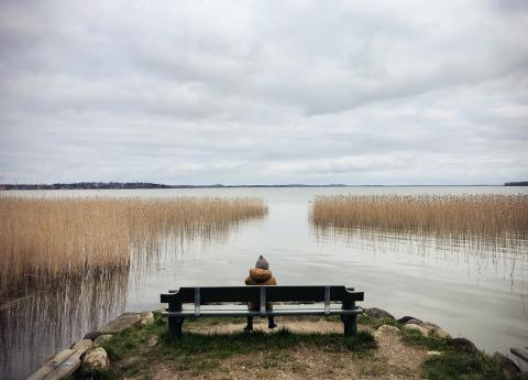 A 3-year-old and his family spending time outdoors during the COVID-19 lock down in Denmark.