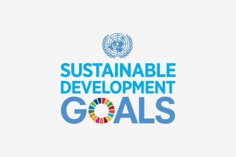 SDG tile