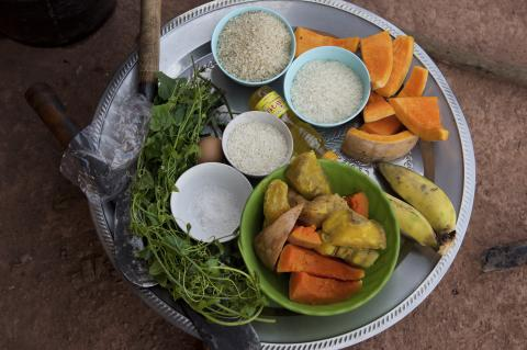 A variety of nutritious foods on display during an outreach session, about healthy and balanced meals to children, in the village of Adone, Ta Oi District, Saravane Province, Lao People's Democratic Republic.
