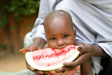 A child eats a watermelon in Niger.