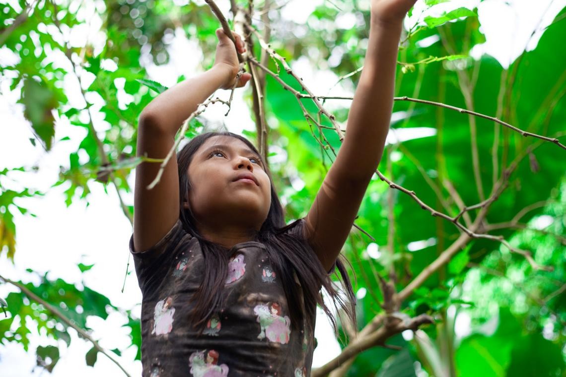 In the Ecuadorian Amazon, remote doesn't mean cut off