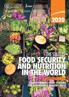 The State Of Food Security And Nutrition In The World 2020 Unicef