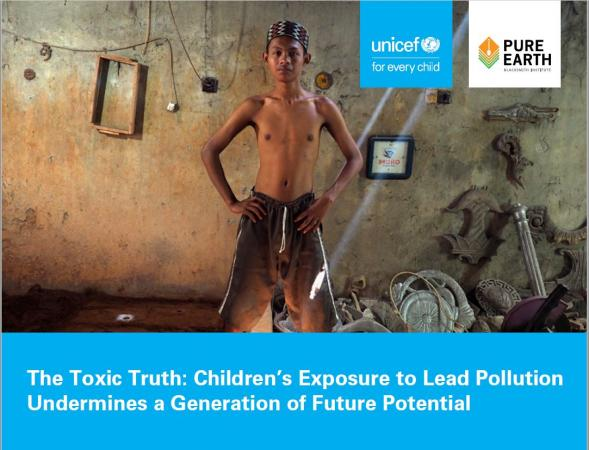 The Toxic Truth: Children's exposure to lead pollution undermines a generation of potential
