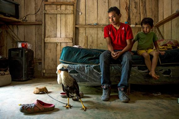 A boy sits on a bed and looks at a bird, Honduras