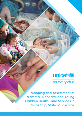 MNCH Gaza Mapping report.