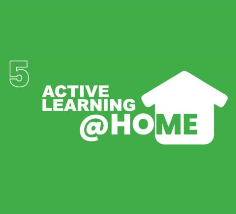 ZAF-active-learning-at-home-5