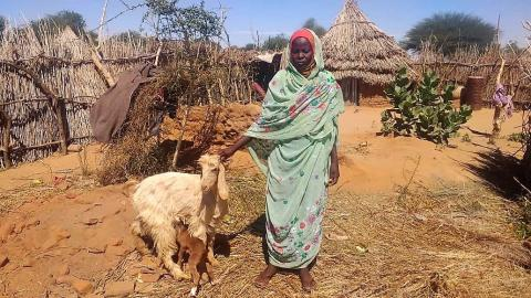 Woman stands with goat
