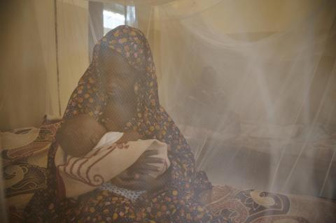 Mother breastfeeding baby behind mosquito net