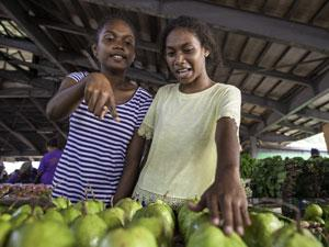 On 24 August, 2019, (left) Francina Sonitoga, 17, and Cecilia Vasuni, 16, buy guava fruits at Honiara Central Market, Guadalcanal, Solomon Islands.