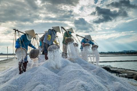 Iodising Salt and Fortifying Flour: The Best Investment for Viet Nam's National Economic Development