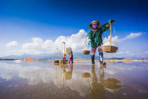 Salt Iodisation in Viet Nam: Learning from the Past and Building Back Better