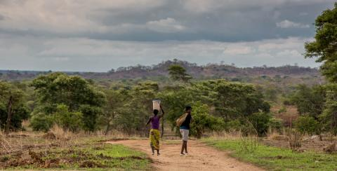 A muddy track with two women, jungle in the distance