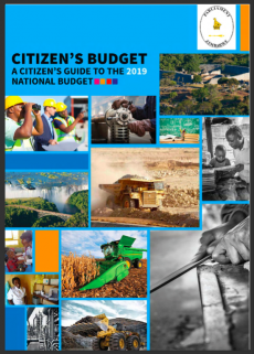 Citizen's Guide to the 2019 Budget | UNICEF Zimbabwe